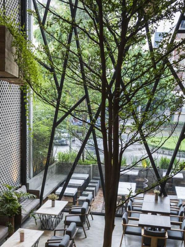 quán cafe nhiều cây xanh ở Hà Nội