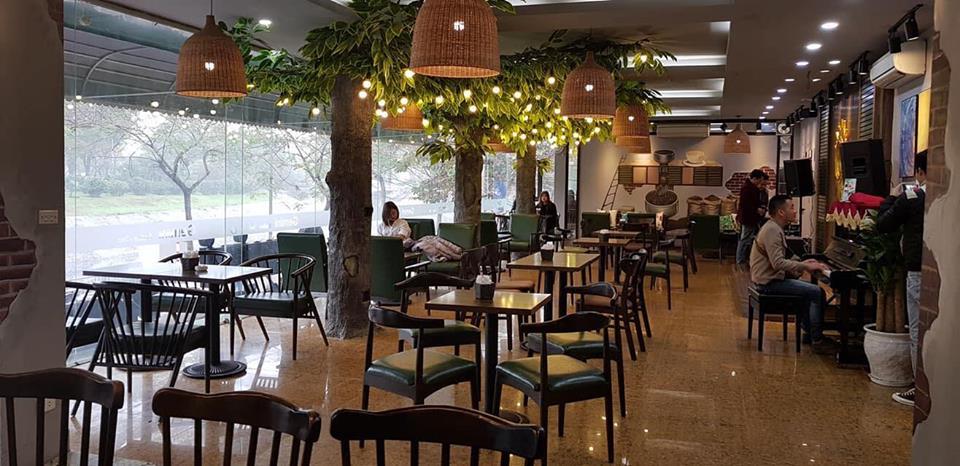 Ghế cafe gỗ TS177